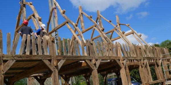 charpente chêne ancien Normandie