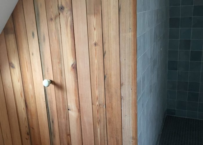 porte en bois ancien